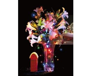 Produttore e fornitore di illuminazione natalizia a led ad energia