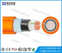 China AS / NZS PVC controle cabo 0.6/1KV fábrica
